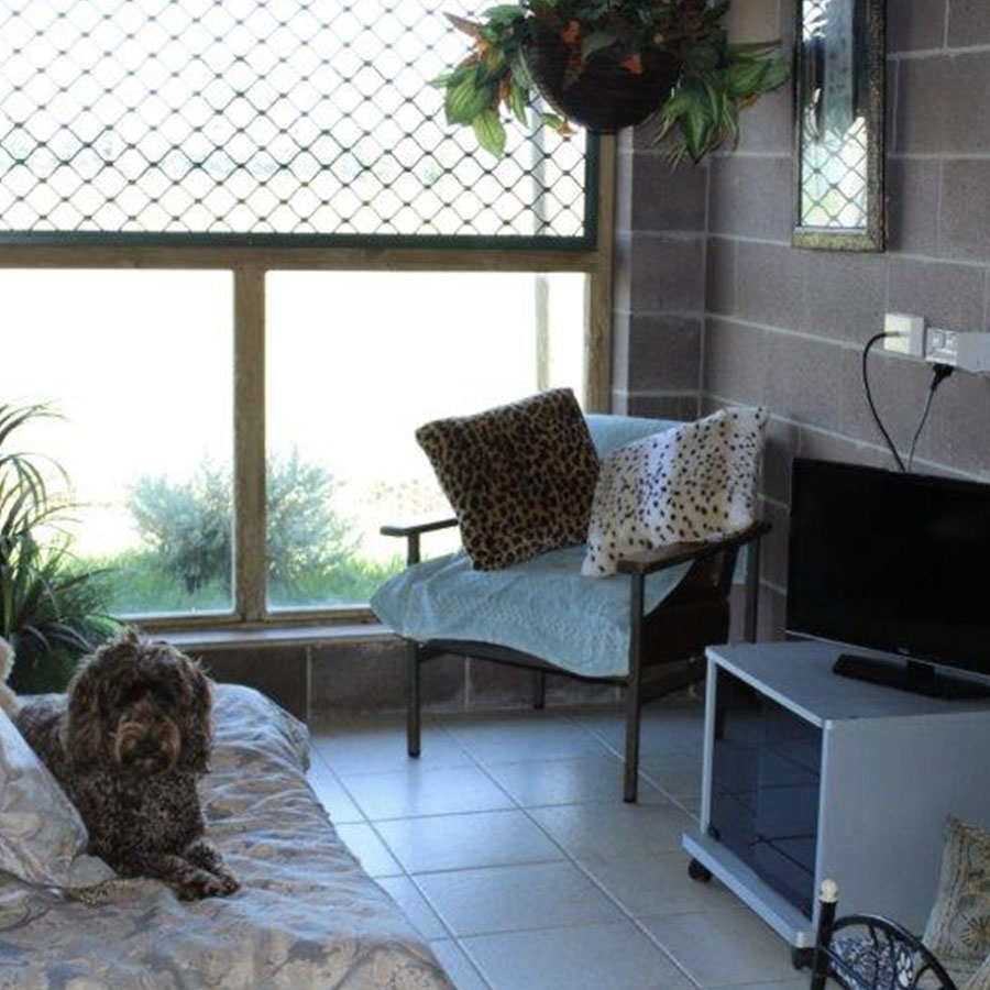 Paw Prints Pet Accommodation